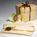 Vintage gift box with envelopes Royalty Free Stock Photos