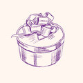 Vintage gift box vector illustration sketch with bow llustration Royalty Free Stock Photography