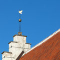 Vintage golden dove weather vane in tallinn above blue sky old part of estonia Royalty Free Stock Image