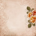 Vintage gorgeous background with lace and roses happy valentine s day card Royalty Free Stock Images