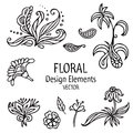 Vintage graphic set of floral elements.  floral shapes on white background. Vector illustration. Royalty Free Stock Photo