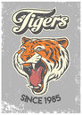 Vintage grunge style of college poster of tiger head Royalty Free Stock Photo