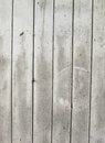 Vintage or grungy white background of natural wood or wooden old texture as a retro pattern layout. It is a concept, conceptual or Royalty Free Stock Photo