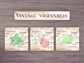 Vintage hand drawn  set of vegetables flashcards on wooden backdrop. Broccoli, beet and zucchini Royalty Free Stock Photo