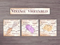 Vintage hand drawn  set of vegetables flashcards on wooden backdrop. Carrot, eggplant, pumpkin Royalty Free Stock Photo