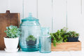Vintage home decor houseplants green succulents old wooden boxes and blue glass bottles on white wooden board cozy Royalty Free Stock Photography