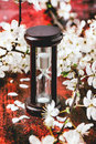 Vintage hourglass with blossom branch of cherry tree on black and red wooden table Stock Image