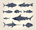 Vintage illustration of fish with names Royalty Free Stock Photo