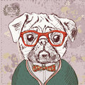 Vintage illustration of hipster pug dog with glasses and bow in vector on background Royalty Free Stock Photo