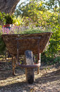 Vintage iron cart full of  flowers Royalty Free Stock Photo