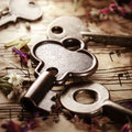 Vintage keys background with old and field flowers Stock Photos