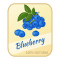 Vintage label with blueberry isolated on white background in cartoon style. Vector illustration. Berries Collection.