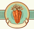 Vintage label carrots vector illustration background design Royalty Free Stock Image