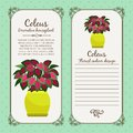 Vintage label with coleus plant
