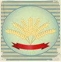 Vintage Label - Ears of wheat Stock Photo