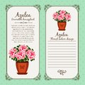 Vintage label with potted flower azalea Royalty Free Stock Photo