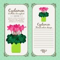 Vintage label with potted flower cyclamen Royalty Free Stock Photo