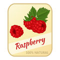 Vintage label with raspberry isolated on white background in cartoon style. Vector illustration. Berries Collection.