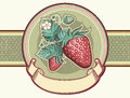 Vintage label red strawberries vector illustration design Royalty Free Stock Photos