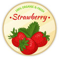 Vintage label with strawberry isolated on white background in cartoon style. Vector illustration. Fruit and Vegetables Royalty Free Stock Photo