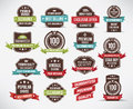 Vintage labels vector illustration of label set Royalty Free Stock Image