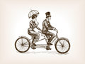 Vintage lady and gentleman bicycle sketch vector