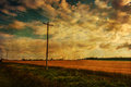 Vintage landscape textured with telephone lines along wheat fields in rural prince edward island Royalty Free Stock Image