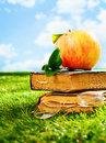 Vintage leather books and an apple in a field two old grunge with pair of retro spectacles lying green grassy summer sunshine Stock Photos
