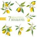 Vintage Lemons, Flowers and Leaves. Lemon Bouquetes