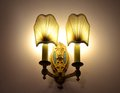 Vintage light fixture ornate duel Stock Image