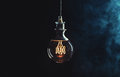 Vintage lightbulb on dark background Royalty Free Stock Photo