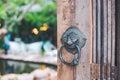Vintage Lion Door-Knobs,Background Coffee Shop Blur Royalty Free Stock Photo