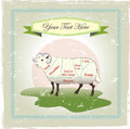 Vintage meat cuts of sheep lamb popular withe a weathered feel Royalty Free Stock Image