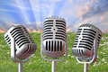 Vintage mics photo of trio of against a background of grass and sun rays in sky Royalty Free Stock Photo