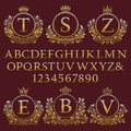 Vintage monogram kit. Golden letters, numbers and floral coat of arms frames for creating initial logo in antique style Royalty Free Stock Photo