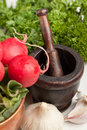 Vintage mortar with vegetables Royalty Free Stock Images