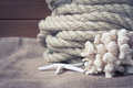 Vintage nautical still life with rope, starfish and coral on old wooden background Royalty Free Stock Photo