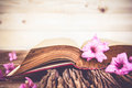 Vintage open book with flowers on old wooden Royalty Free Stock Photo