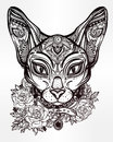 Vintage ornate cat head with floral collar. Royalty Free Stock Photo