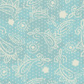 Vintage paisley elements seamless pattern Royalty Free Stock Photography