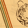 Vintage paper background with tiger burnt paper Stock Images