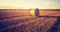 Vintage photo of straw bales on stubble Royalty Free Stock Photo