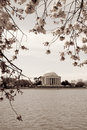Vintage photograph of Jefferson Memorial framed wi Royalty Free Stock Photo