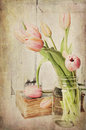 Vintage Pink Tulips Royalty Free Stock Photo