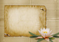 Vintage postcard with bunch of water lily for invitation Stock Image