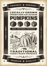 Vintage pumpkin harvest poster in woodcut style editable eps vector illustration with clipping mask Stock Image