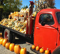 Vintage red farm truck with fall harvest gourds a fire engine pick up is parked in farmyard it has a black flatbed behind it laden Royalty Free Stock Photos