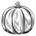 Vintage retro woodcut pumpkin a print or etching style illustration Royalty Free Stock Photos