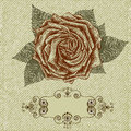 Vintage rose background. Vector in retro style Royalty Free Stock Images