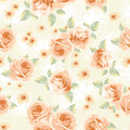 Vintage roses seamless over lace background Stock Image